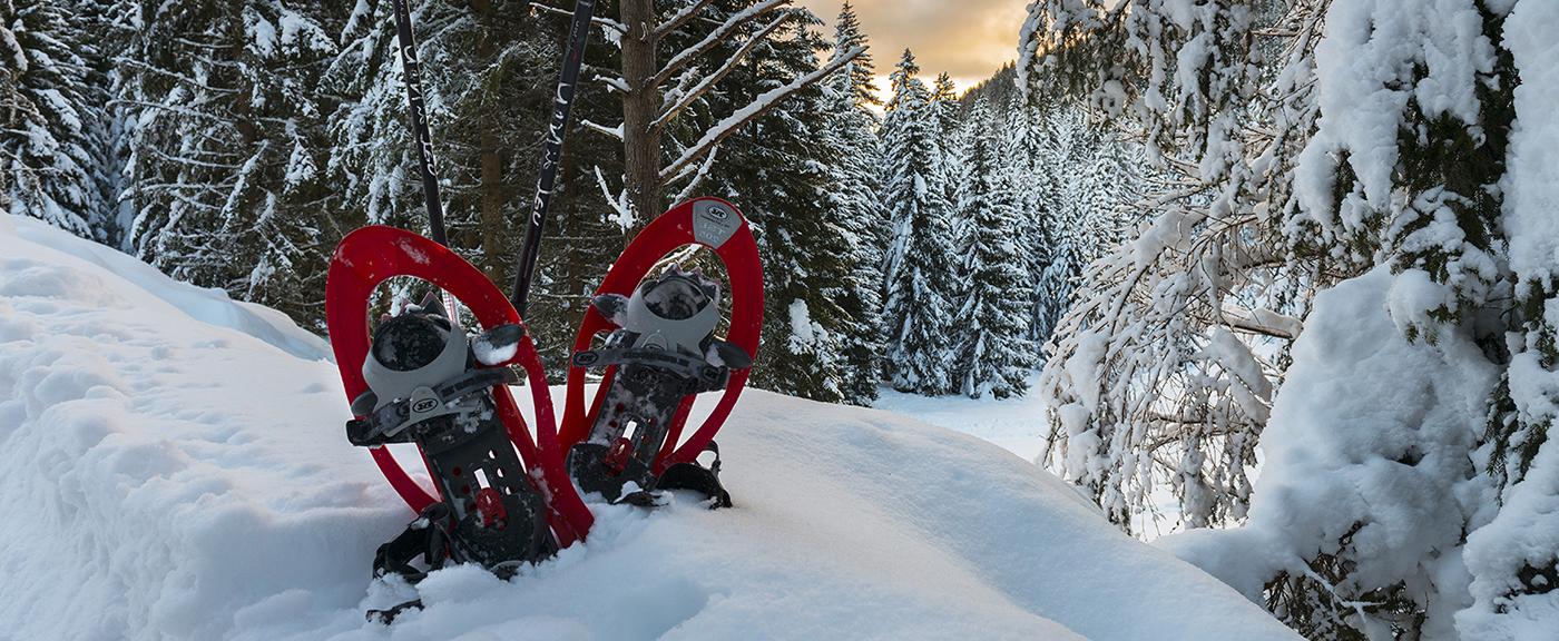 vacanza in Trentino Val di Non