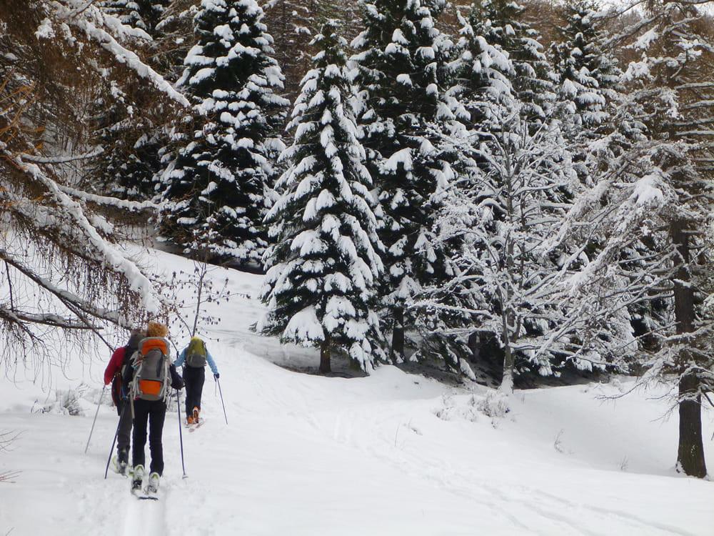 guida-alle-vacanze-sulla-neve-in-val-di-non